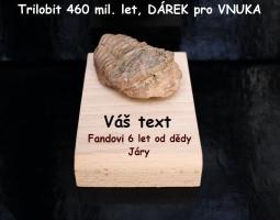 Trilobit pravěká fosílie DÁREK s VĚNOVÁNÍM pro VNUKA