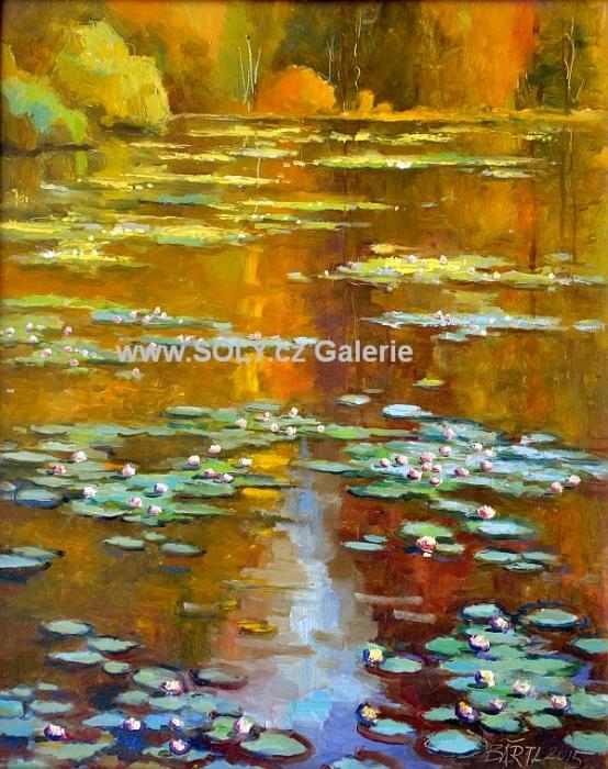 Zrcadlení, olej na desce, 40x50 cm, originální obraz český malíř cena 12 000,-