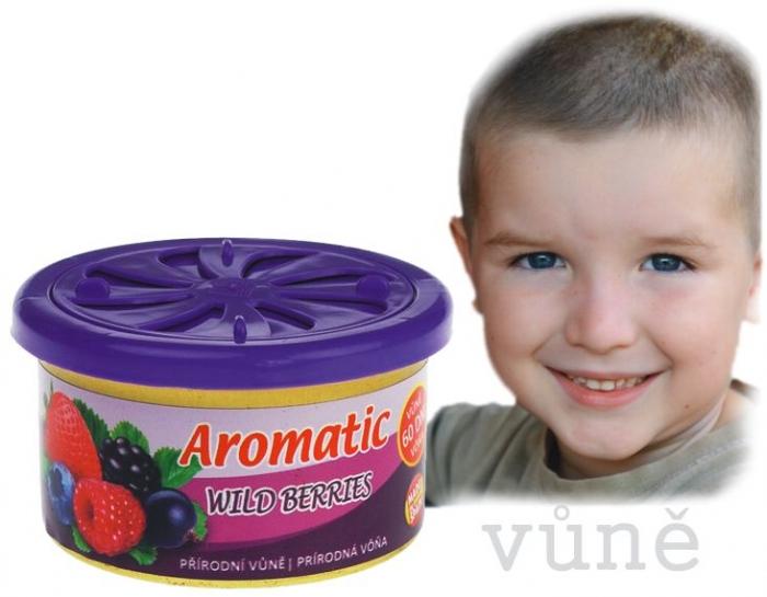ůně do auta Aromatic | lesní ovoce